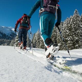 Skitourengeher, Foto: DAV/Daniel Hug
