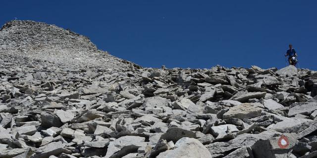 Schuttfelder - Kopfsteinpflaster: Gewaltige Schuttfelder gibt es oft in der Rieserfernergruppe; trotzdem ist der Weg zum Fernerköpfl gut.