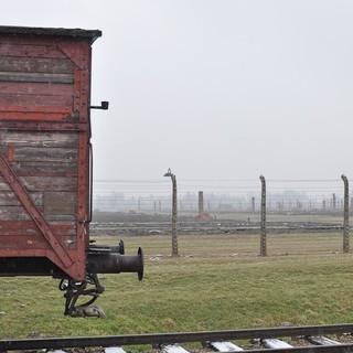 Lager Birkenau: Transportwagen, im Hintergrund das Lager&#x3B; (c) Jonas Freihart