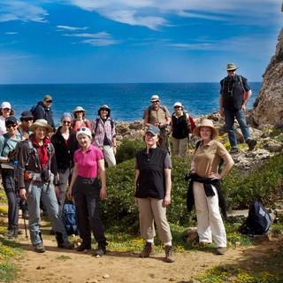 Mallorca-Wikinger-Reisen
