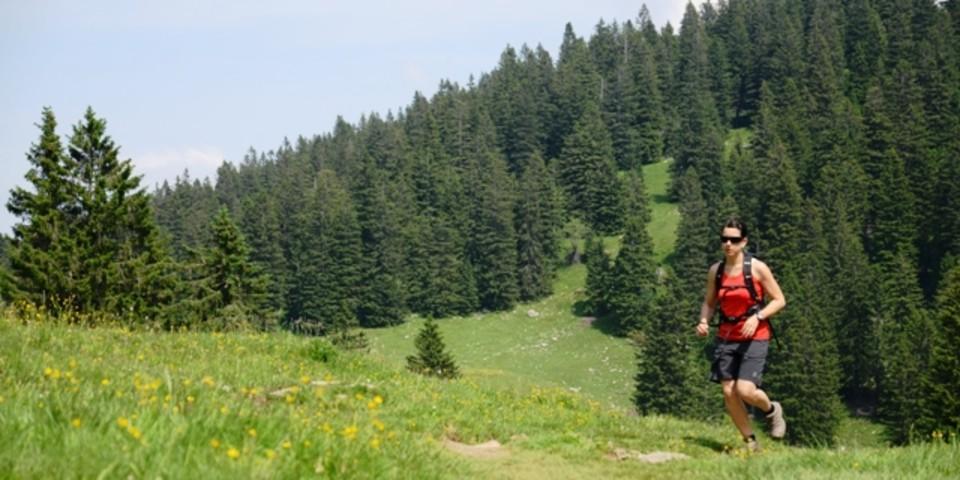 Trailrunning am Hochries