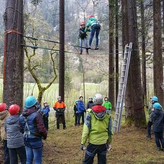 Mobile Seilgartenelemente im Wald. Foto: Wolfgang Mayr