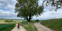 Die Streckenführung ist nicht immer ganz leicht zu finden, Foto: Joachim Chwasczca