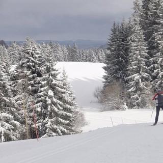 """""""Franco-Suisse""""-Loipe - Entlang der """"Franco-Suisse""""-Loipe weisen Schilder darauf hin, dass man sich gegebenenfalls gegenüber Grenzbeamten ausweisen&nbsp&#x3B;muss. Es fehlt auch nicht der augenzwinkernde Hinweis, dass die Grenzer sehr trainierte Skifahrer seien..."""