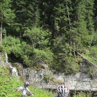 Vallesinella-Wasserfall - Um den beeindruckenden Vallesinella-Wasserfall im Brenta-Naturpark in der Nähe von Madonna di Campiglio zu bewundern, sollte man schon stehen bleiben. Der von der ständigen Gischt feuchte Waldboden erfordert schon beim Gehen äusserste Aufmerksamkeit, will man nicht ausrutschen.