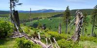Auch die Dimensionen sind ganz schön riesig: Im Riesengebirge hat man was zu laufen. Foto: Swen Geißler