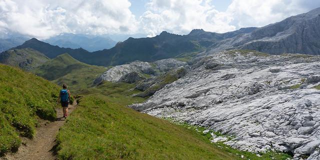 Karst grenzt an satte Wiesen: geologischer Bruch auf dem Sulzfluhplateau. Foto: Ute Watzl