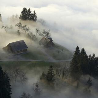 Alpe Gsohl, Vorarlberg, Österreich. Foto: Peter Mathis