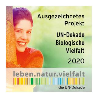 191019 028 UN-Dekade Logo Ausgezeichnetes Projekt-2020 280x280px