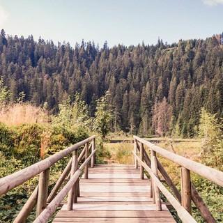 Einladend: Steg am Huzenbacher See, Foto: Stefan Kuhn Photography
