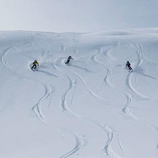 Skifahrer*innen bei der Abfahrt im Pulverschnee. Foto: JDAV / Christoph Hummel