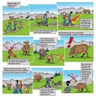 Verhaltensregeln für Wanderer, Bild: Landwirtschaftskammer Tirol