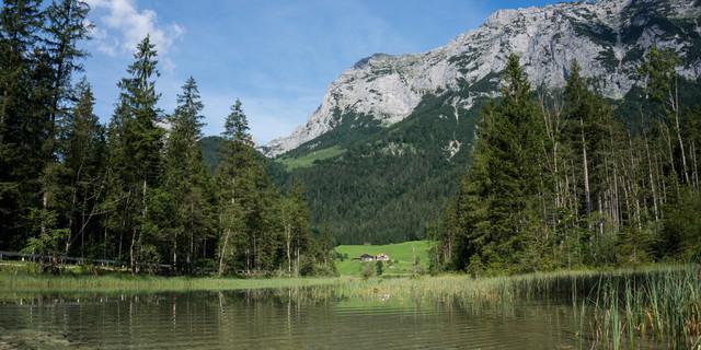 Ob es einen weiteren Alpen-Nationalpark gibt (wie hier in Berchtesgaden) ist ungewiss. Aber vielleicht woanders in Bayern? Foto: Tobias Hipp