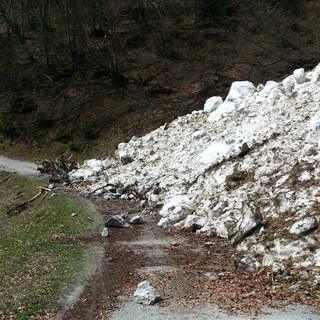 Lawine im Schneefreien Gelände, Foto: Dagmar Walter