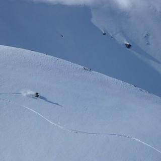 Eine Linie im weißen Powder. Foto: Markus Fleischmann