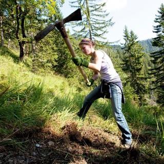 Der Natur etwas zurückgeben - die Aktion Schutwald macht es möglich. Foto: DAV/Marco Kost