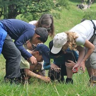 Kinder auf Wiesenabenteuer, Foto: JDAV/Lena Behrendes