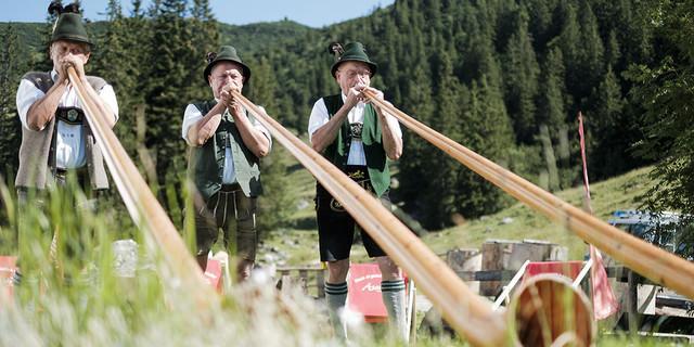 Alphörner am am Geigelstein