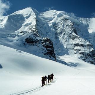 Skitourengeher beim Aufstieg über flachen Gletscher, Piz Palue, Bernina, Schweiz