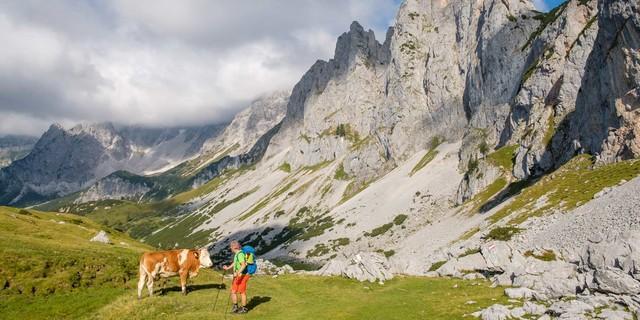 Felsenmeer: Gosaukamm und Dachstein-Südwände bilden die Kulisse am zweiten Tag. Foto: Iris Kürschner