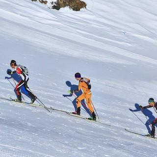 Vertical Race-Skibergsteigen Info