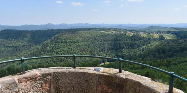 Vom Luitpoldturm sehe ich rund herum nur Wald. Foto: Günter Kromer
