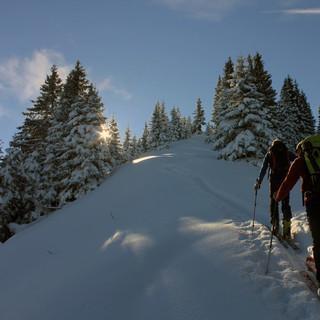 Skitouren im Waldbereich sind angesagt, auch wenn das Wetter nicht so schön wird, wie vergangenen Dienstag am Teufelsstättkopf (Foto Pröttel)