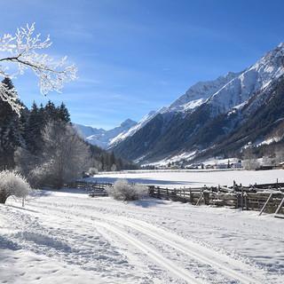 Winter im Gschnitztal. Foto: J. Strickner