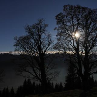 Bergherbst-Stimmung am Hörnle. Foto: M. Pröttel