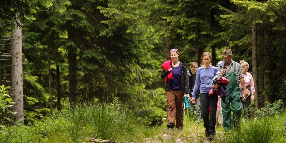 Aktion Schutzwald - Nach getaner Arbeit geht es zurück zur Hütte, Foto: DAV/Arvid Uhlig
