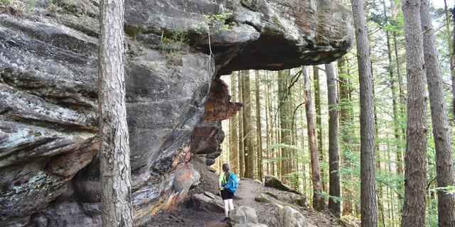Bei Rodalben komme ich an vielen herrlichen Felsen vorbei. Foto: Günter Kromer