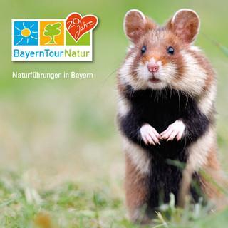 20. BayernTourNatur; Teaser