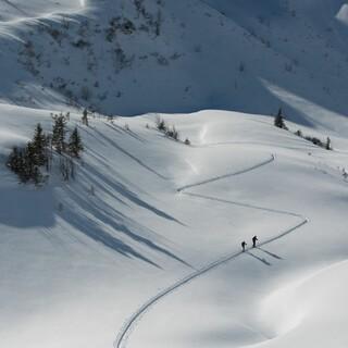 Natürlich auf Tour: Skispur. Foto: DAV / Terragraphy.de
