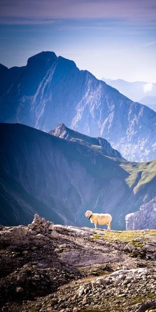 Man darf beruhigt sein: Die einsamen Regionen und nicht überlaufene Hütten gibt es noch! Foto: DAV/Jan Kerper