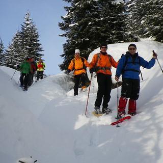 Beim Abstieg von der Krinnenspitze Richtung Rauth, wieder unterhalb der Baumgrenze. Foto: Thomas Krobbach