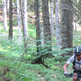 Trail zur Hochkopfhütte - Start ins Alpencross-Vergnügen auf einem Singletrail zur Hochkopfhütte am Walchensee.
