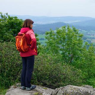 Die Milseburg ist die höchste Erhebung der Kuppenrhön mit groben Blockhalden von Erosion freigelegtem und gesprungenem Basalt. Foto: Joachim Chwasczca