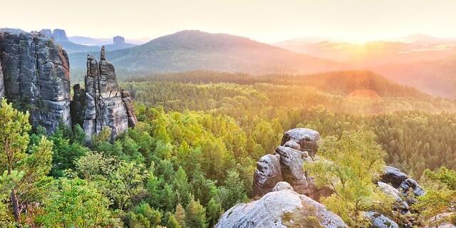 Elbsandsteingebirge. So gesund wie auf diesem Bild sieht der Wald vielerorts in der Sächsischen Schweiz nach Dürre und Borkenkäferbefall nicht mehr aus. Foto: Tim Mrzyglod/Fossane auf Pixabay