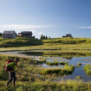 Totes Gebirge: Aufpassen, dass es im Moor keine nassen Füße gibt! Aber sonst darf man sich an der Tauplitzalm treiben lassen. Foto: Iris Kürschner