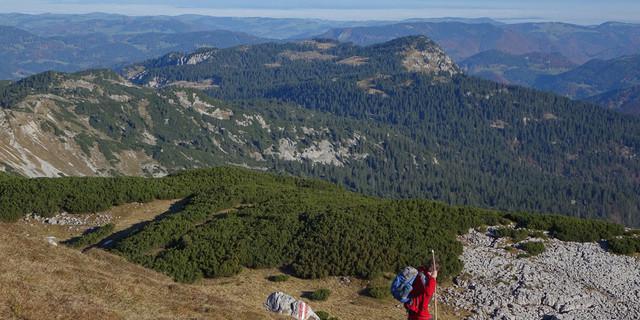 Weit, weiter, Dürrenstein: Blick vom Gipfel über die Hochfläche zum Böhmerwald am fernen Horizont. Foto: Axel Klemmer