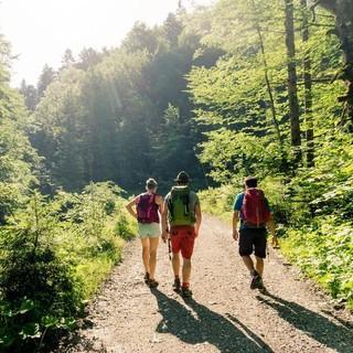 Genug Abstand halten ist auch beim Wandern wichtig. Foto: DAV/Hans Herbig