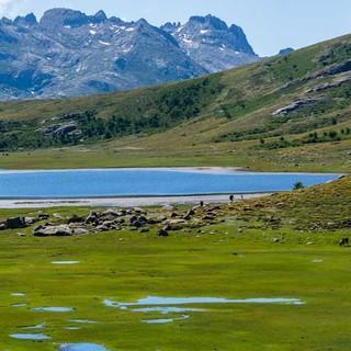 Der Lac de Nino liegt idyllisch eingebettet in Hochtalmoorwiesen mit Blick auf den Monte Cinto, Korsikas höchsten Berg.