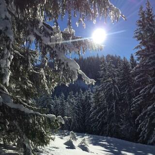 Sonnige Wintertage liefern wertvolles Vitamin D. Foto: DAV