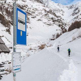 Zum Schönnerkofel startet man von der Straße zum Timmelsjoch weg. Foto: Ingo Röger