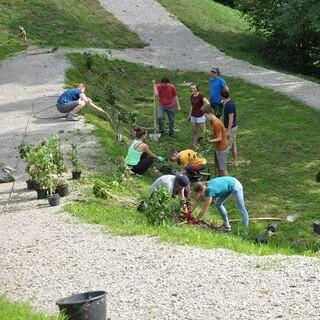 Weiter geht's, einige Pflanzen warten noch auf ihre Löcher, Foto: Jubi/Nico Löder