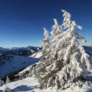 Oberhalb des Spitzingsees, wie hier an der Brecherspitze kann man bereits Skitouren unternehmen. Foto: DAV/M. Pröttel