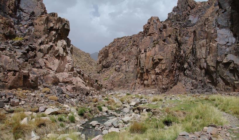 Felslandschaft - Wo das Leben kämpft: Entlang der Gewässer wachsen Gräser in der Felslandschaft.