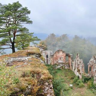 Neuscharfeneck ist eine der größten Ruinen der Pfalz. Foto: Günter Kromer