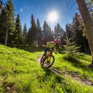 DIVAS Bike Camp powered by VAUDE