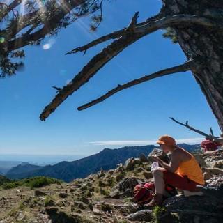 Pause könnte nicht schönes sein. Unter der schattenspendenden alten Kiefer schweift der Blick über die gewaltige Bergwelt Korsikas vom Monte Incudine bis zum Monte Renoso.